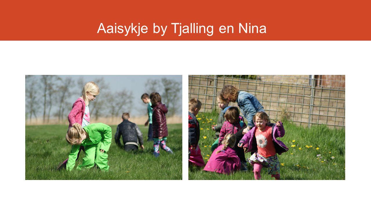 Aaisykje by Tjalling en Nina