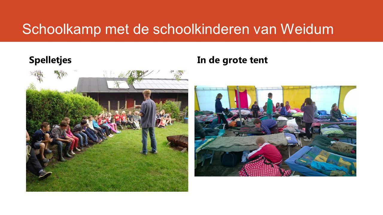 Schoolkamp met de schoolkinderen van Weidum SpelletjesIn de grote tent