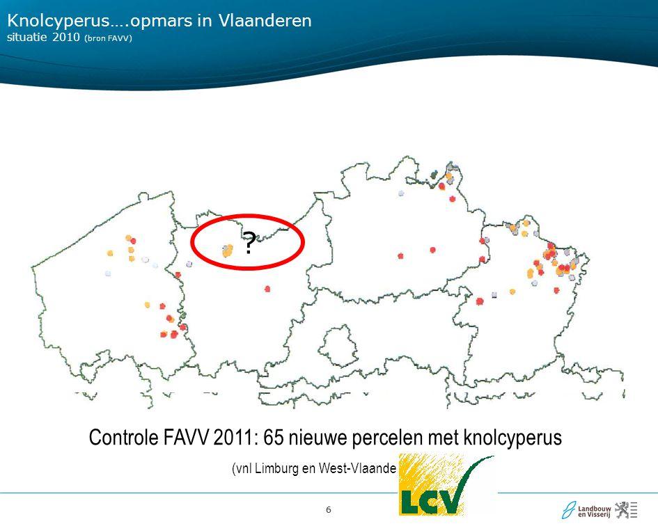 66 Knolcyperus….opmars in Vlaanderen situatie 2010 (bron FAVV) Controle FAVV 2011: 65 nieuwe percelen met knolcyperus (vnl Limburg en West-Vlaanderen)