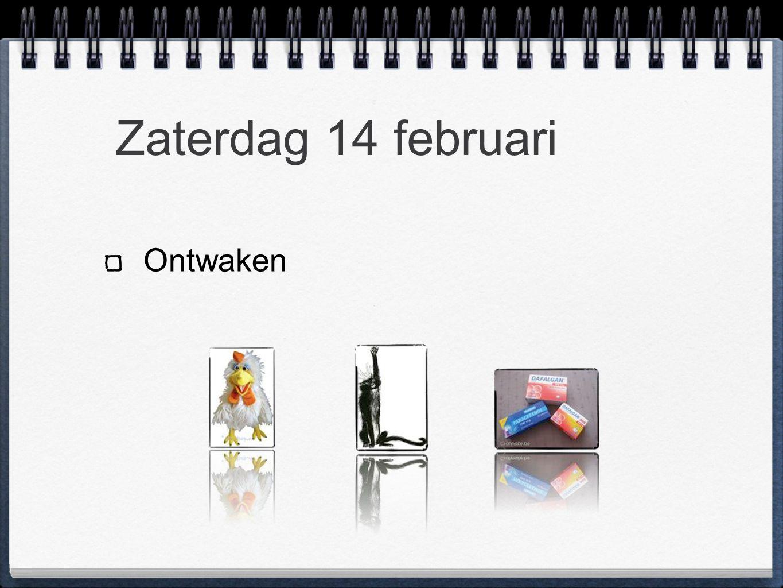 Zaterdag 14 februari Ontwaken