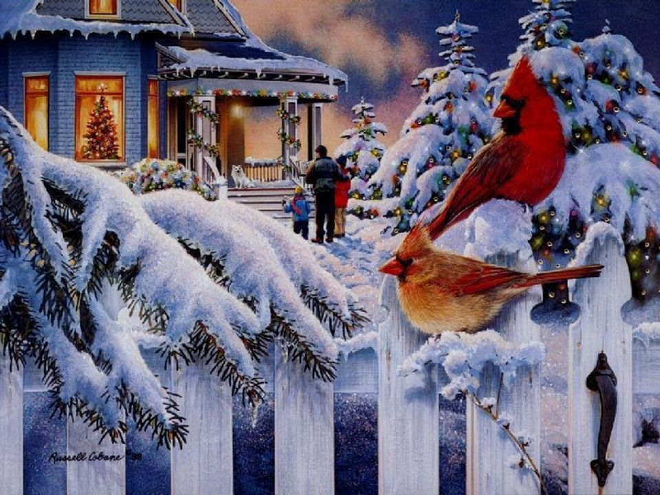 Een kerstkaart met wat lieve woorden En een goede wens Die stuur ik jou van harte Van mens tot mens.