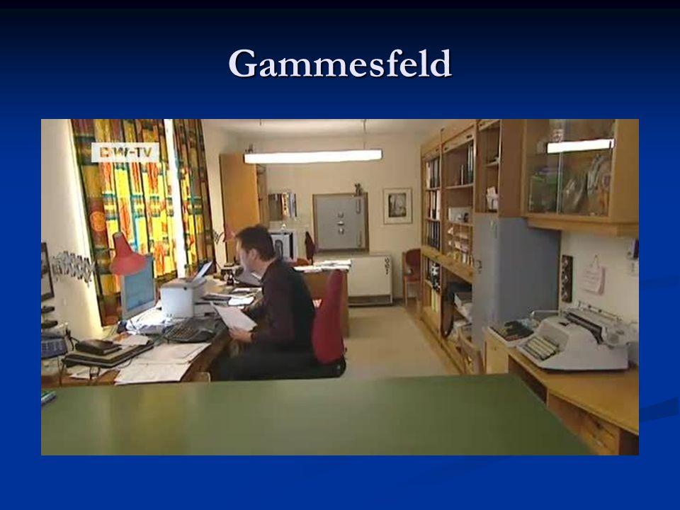 Gammesfeld