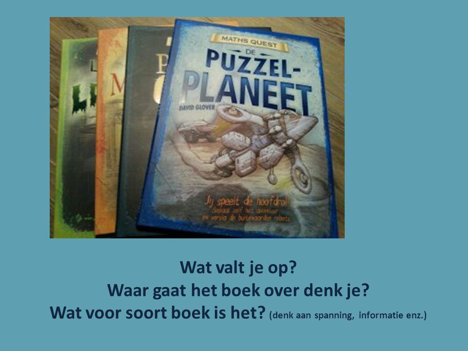 Wat valt je op? Waar gaat het boek over denk je? Wat voor soort boek is het? (denk aan spanning, informatie enz.)