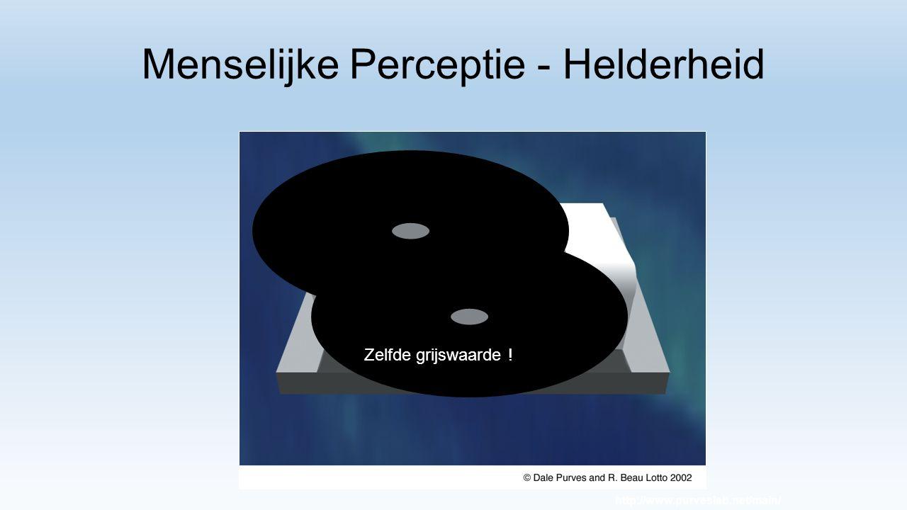 Menselijke Perceptie - Helderheid Grijswaarde http://www.purveslab.net/main/ Zelfde grijswaarde !