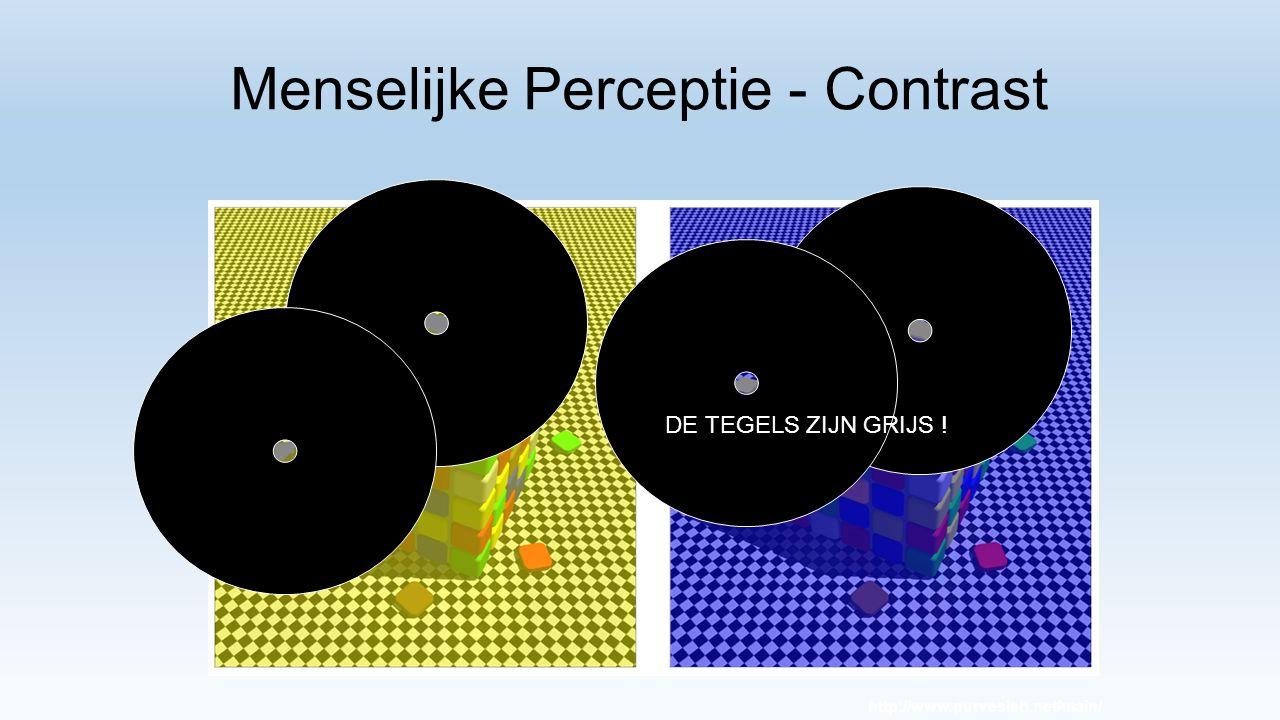 Menselijke Perceptie - Contrast http://www.purveslab.net/main/ DE TEGELS ZIJN GRIJS !