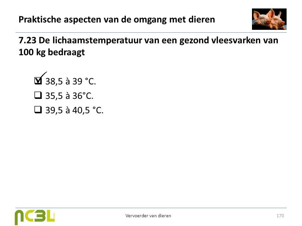 Praktische aspecten van de omgang met dieren 7.23 De lichaamstemperatuur van een gezond vleesvarken van 100 kg bedraagt  38,5 à 39 °C.  35,5 à 36°C.