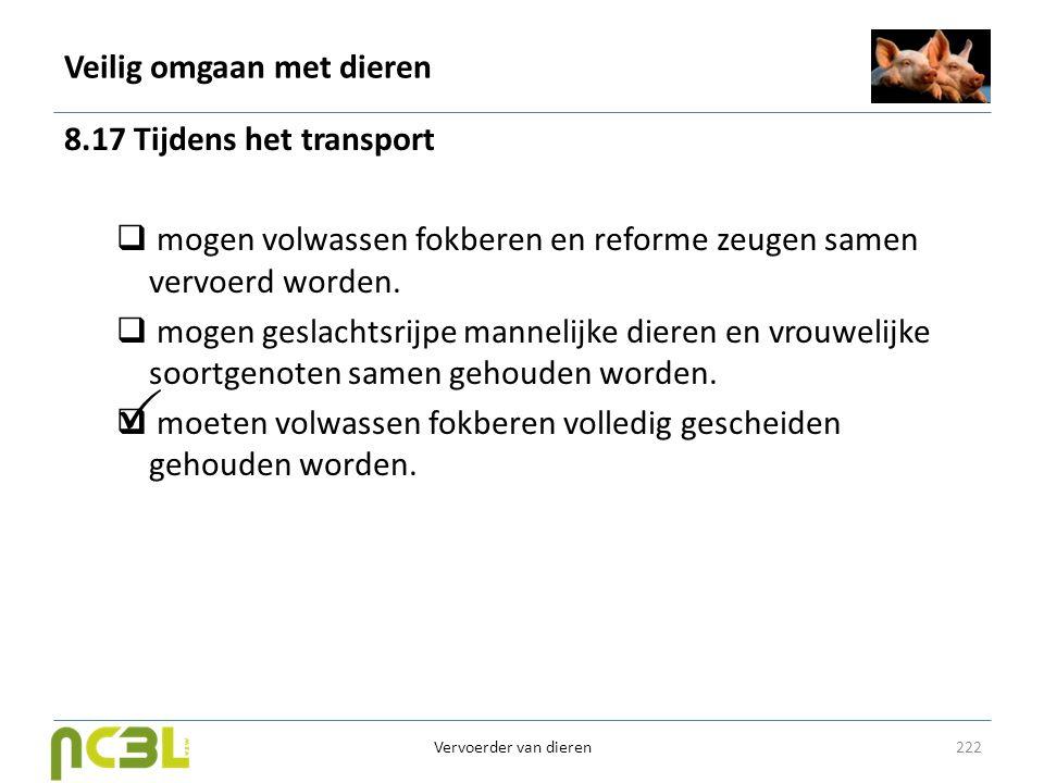 Veilig omgaan met dieren 8.17 Tijdens het transport  mogen volwassen fokberen en reforme zeugen samen vervoerd worden.  mogen geslachtsrijpe manneli