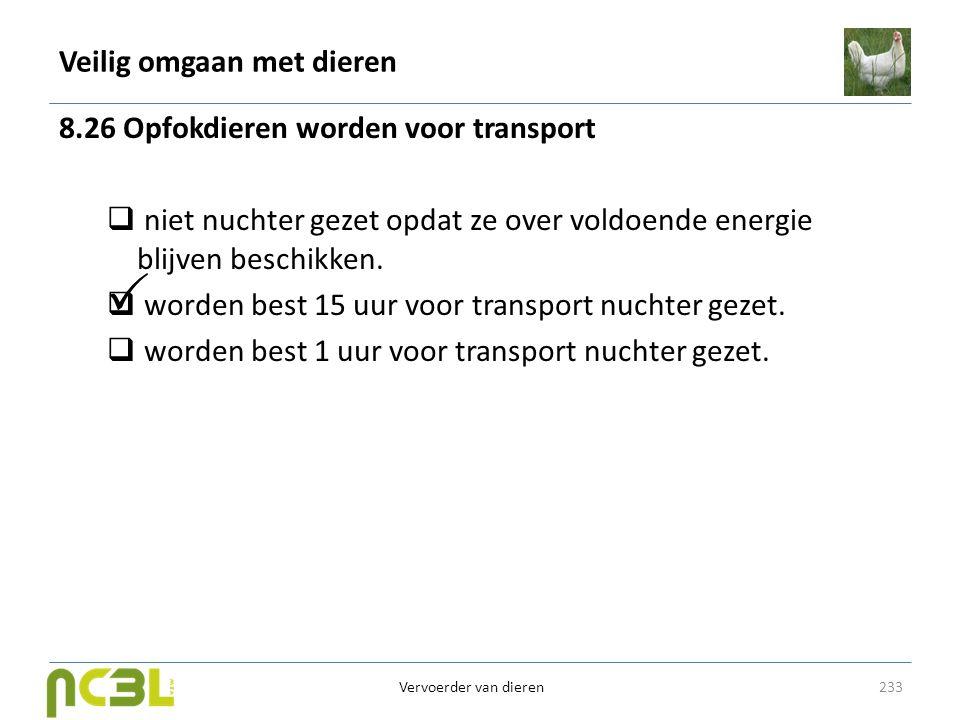 Veilig omgaan met dieren 8.26 Opfokdieren worden voor transport  niet nuchter gezet opdat ze over voldoende energie blijven beschikken.  worden best