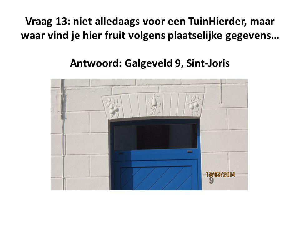 Vraag 13: niet alledaags voor een TuinHierder, maar waar vind je hier fruit volgens plaatselijke gegevens… Antwoord: Galgeveld 9, Sint-Joris