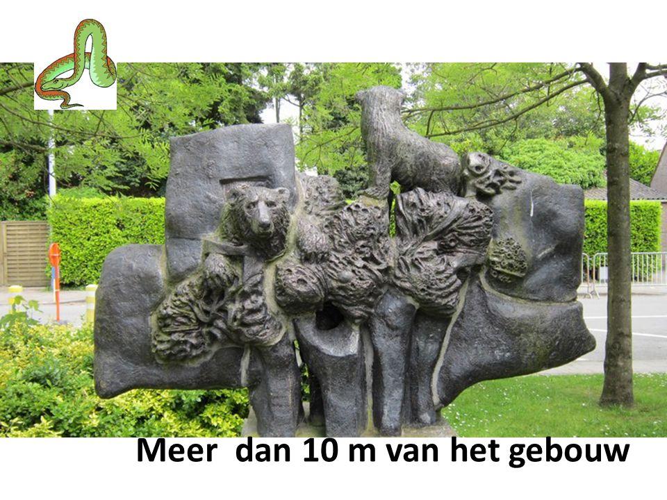 VRAAGSTELLING : Welke Mariaplanten kan je vinden nabij de Veldkapel zoals hier vermeld .