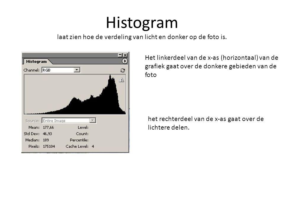 Histogram laat zien hoe de verdeling van licht en donker op de foto is. Het linkerdeel van de x-as (horizontaal) van de grafiek gaat over de donkere g