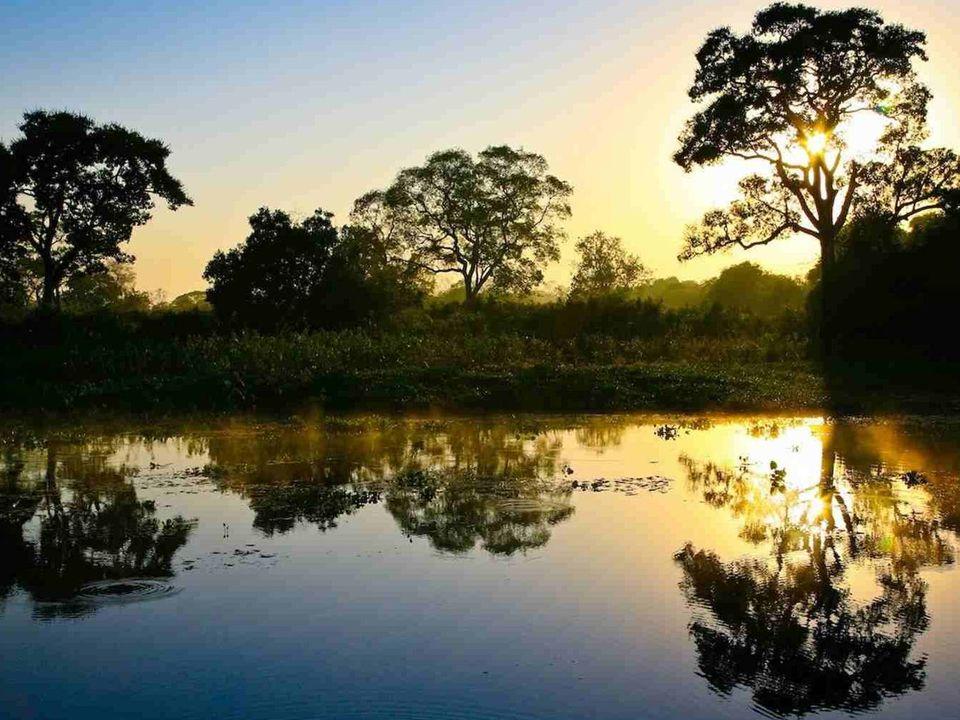 De rivier stroomt voor het grootste gedeelte door het Amazonebekken en het Amazoneregenwoud.