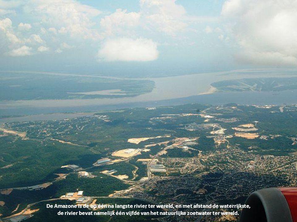 De Amazone is de op één na langste rivier ter wereld, en met afstand de waterrijkste, de rivier bevat namelijk één vijfde van het natuurlijke zoetwater ter wereld.