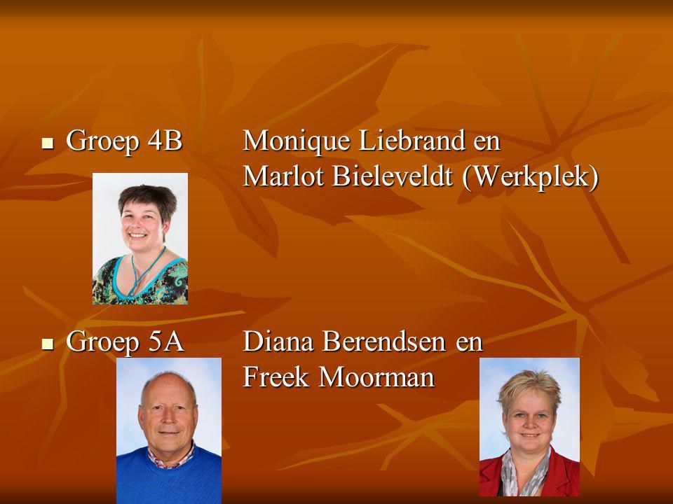 Groep 4BMonique Liebrand en Marlot Bieleveldt (Werkplek) Groep 4BMonique Liebrand en Marlot Bieleveldt (Werkplek) Groep 5ADiana Berendsen en Freek Moorman Groep 5ADiana Berendsen en Freek Moorman