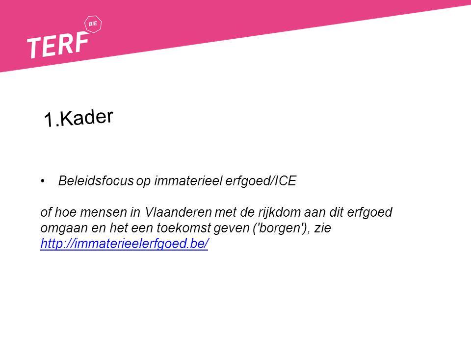 Beleidsfocus op immaterieel erfgoed/ICE of hoe mensen in Vlaanderen met de rijkdom aan dit erfgoed omgaan en het een toekomst geven ('borgen'), zie ht