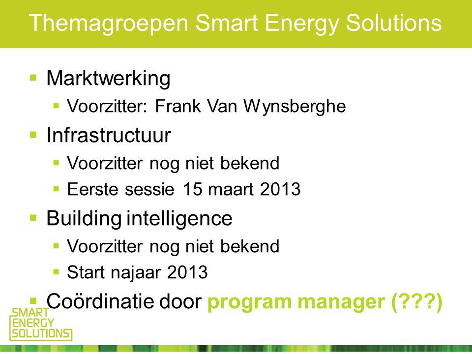Themagroepen Smart Energy Solutions  Marktwerking  Voorzitter: Frank Van Wynsberghe  Infrastructuur  Voorzitter nog niet bekend  Eerste sessie 15 maart 2013  Building intelligence  Voorzitter nog niet bekend  Start najaar 2013  Coördinatie door program manager ( )