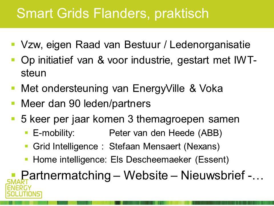 Smart Grids Flanders, praktisch  Vzw, eigen Raad van Bestuur / Ledenorganisatie  Op initiatief van & voor industrie, gestart met IWT- steun  Met ondersteuning van EnergyVille & Voka  Meer dan 90 leden/partners  5 keer per jaar komen 3 themagroepen samen  E-mobility: Peter van den Heede (ABB)  Grid Intelligence : Stefaan Mensaert (Nexans)  Home intelligence: Els Descheemaeker (Essent)  Partnermatching – Website – Nieuwsbrief -…