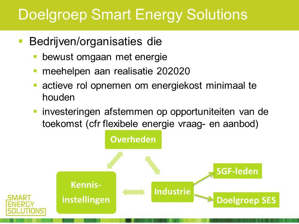 Doelgroep Smart Energy Solutions  Bedrijven/organisaties die  bewust omgaan met energie  meehelpen aan realisatie 202020  actieve rol opnemen om energiekost minimaal te houden  investeringen afstemmen op opportuniteiten van de toekomst (cfr flexibele energie vraag- en aanbod) Overheden Industrie Kennis- instellingen SGF-leden Doelgroep SES