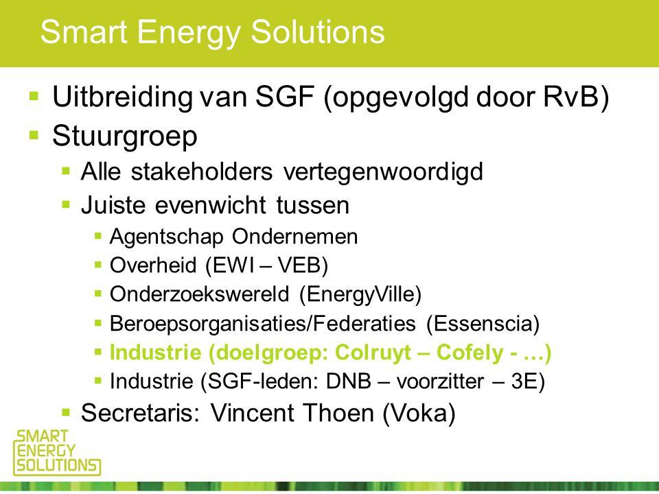 Smart Energy Solutions  Uitbreiding van SGF (opgevolgd door RvB)  Stuurgroep  Alle stakeholders vertegenwoordigd  Juiste evenwicht tussen  Agentschap Ondernemen  Overheid (EWI – VEB)  Onderzoekswereld (EnergyVille)  Beroepsorganisaties/Federaties (Essenscia)  Industrie (doelgroep: Colruyt – Cofely - …)  Industrie (SGF-leden: DNB – voorzitter – 3E)  Secretaris: Vincent Thoen (Voka)