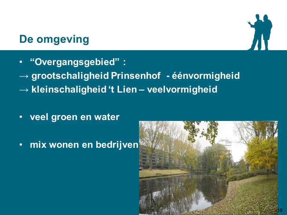 De omgeving Overgangsgebied : → grootschaligheid Prinsenhof - éénvormigheid → kleinschaligheid 't Lien – veelvormigheid veel groen en water mix wonen en bedrijven 10