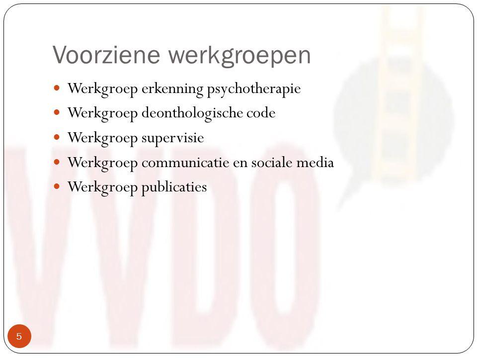 Voorziene werkgroepen Werkgroep erkenning psychotherapie Werkgroep deonthologische code Werkgroep supervisie Werkgroep communicatie en sociale media Werkgroep publicaties 5