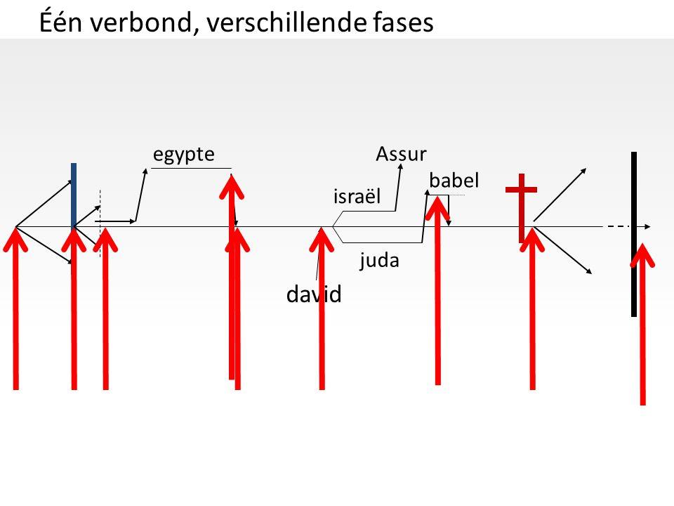 Één verbond, verschillende fases david israël juda egypteAssur babel