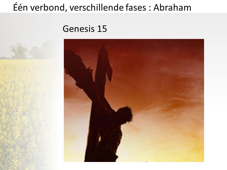 Één verbond, verschillende fases : Abraham Genesis 15