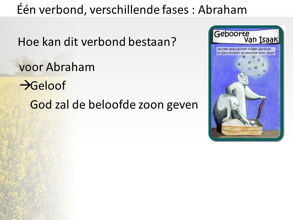 Één verbond, verschillende fases : Abraham Hoe kan dit verbond bestaan? voor Abraham  Geloof God zal de beloofde zoon geven