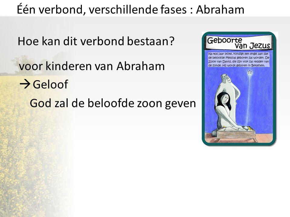Één verbond, verschillende fases : Abraham Hoe kan dit verbond bestaan? voor kinderen van Abraham  Geloof God zal de beloofde zoon geven