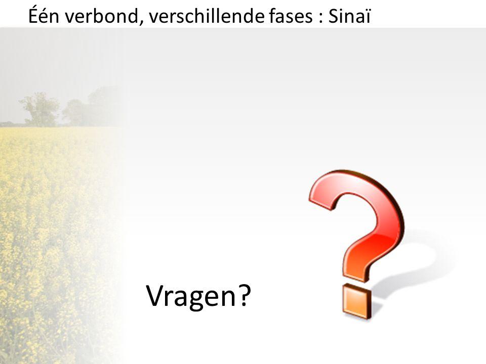 Vragen? Één verbond, verschillende fases : Sinaï