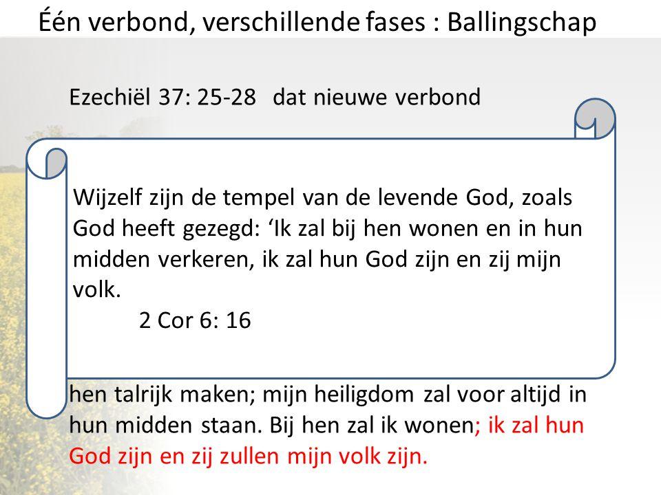 Één verbond, verschillende fases : Ballingschap Ezechiël 37: 25-28 dat nieuwe verbond Zij zullen mijn volk zijn en ik zal hun God zijn. David, mijn di