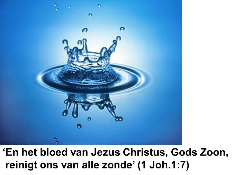 'En het bloed van Jezus Christus, Gods Zoon, reinigt ons van alle zonde' (1 Joh.1:7)