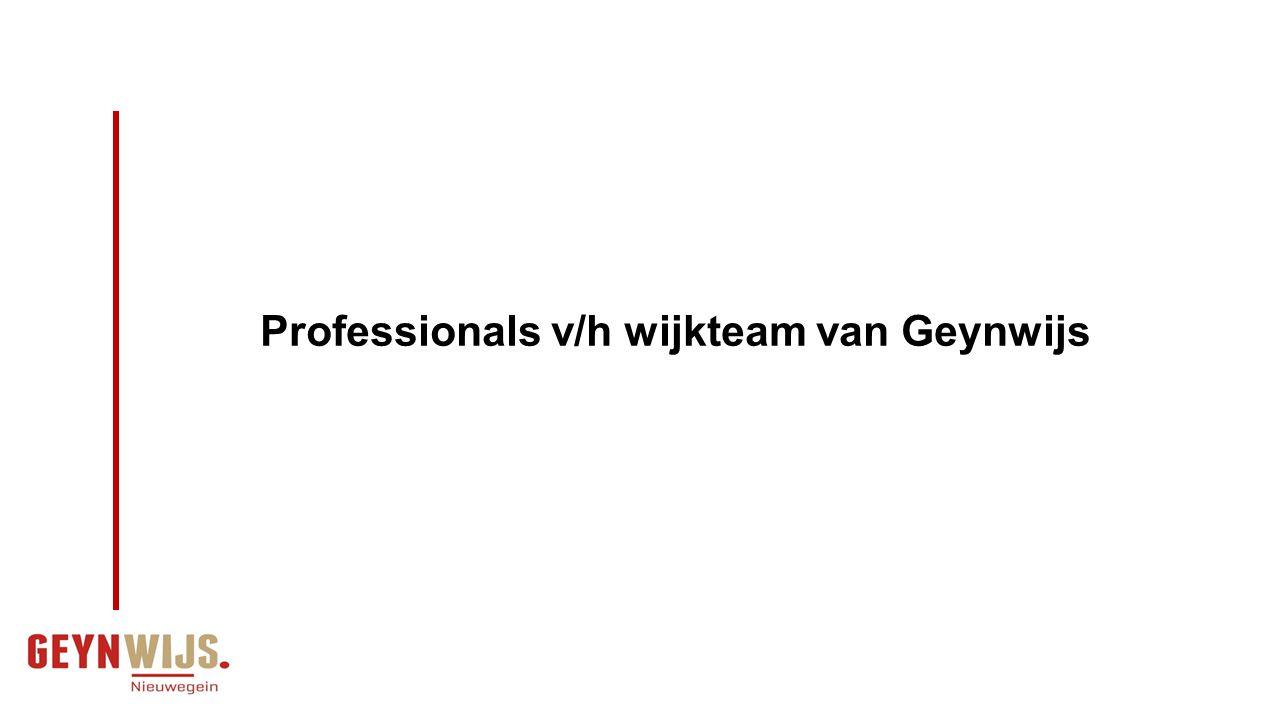 Professionals v/h wijkteam van Geynwijs