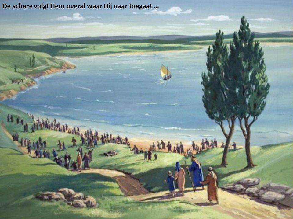 De schare volgt Hem overal waar Hij naar toegaat …