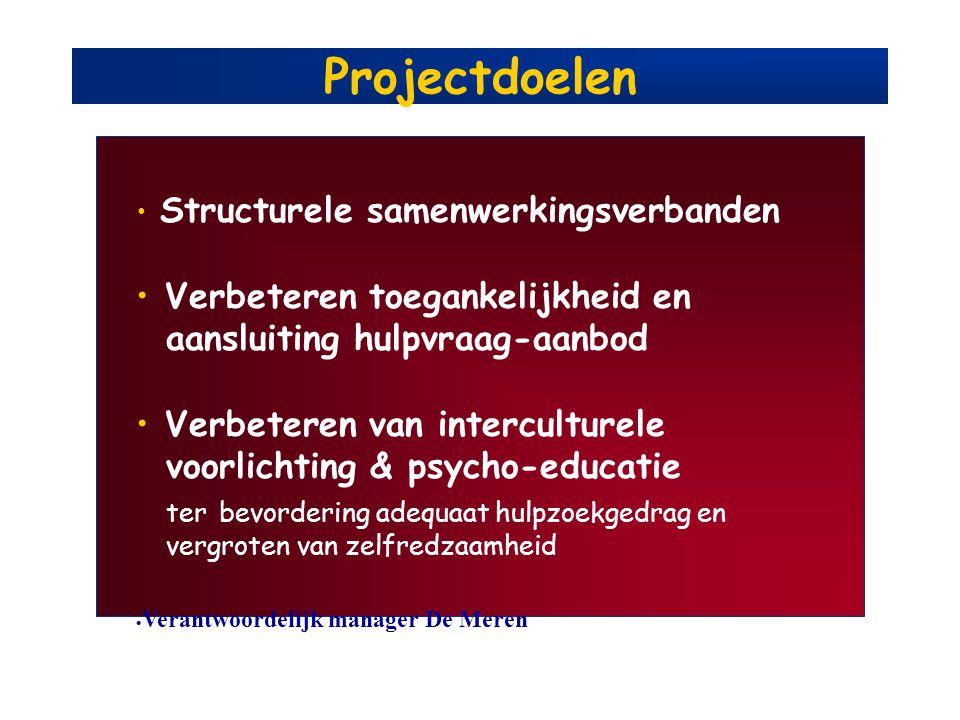 Projectdoelen Structurele samenwerkingsverbanden Verbeteren toegankelijkheid en aansluiting hulpvraag-aanbod Verbeteren van interculturele voorlichtin