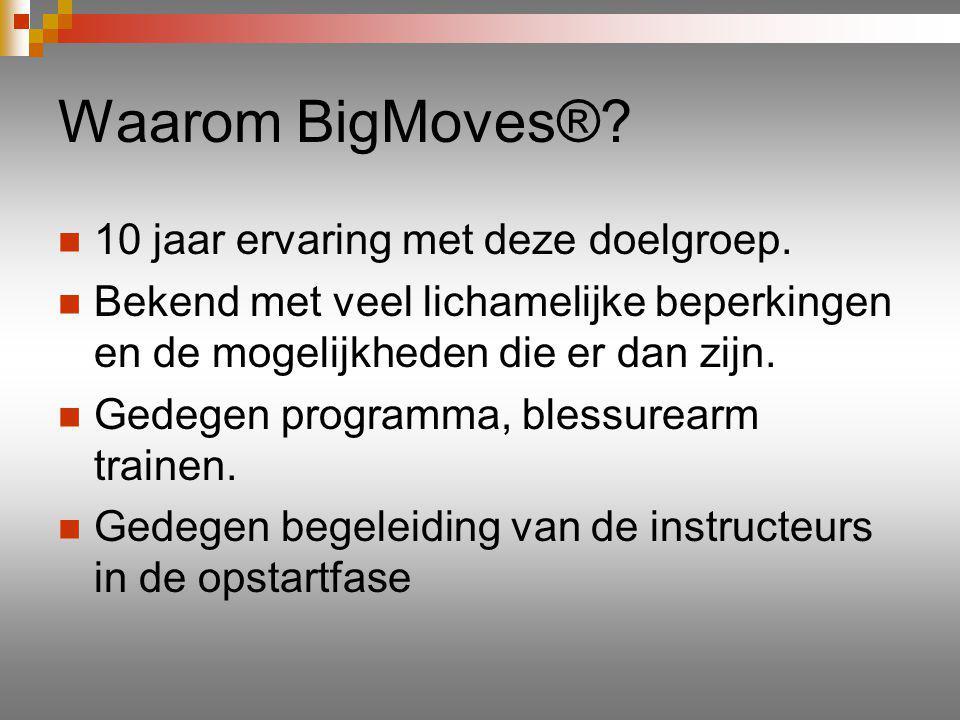 Waarom BigMoves®. 10 jaar ervaring met deze doelgroep.