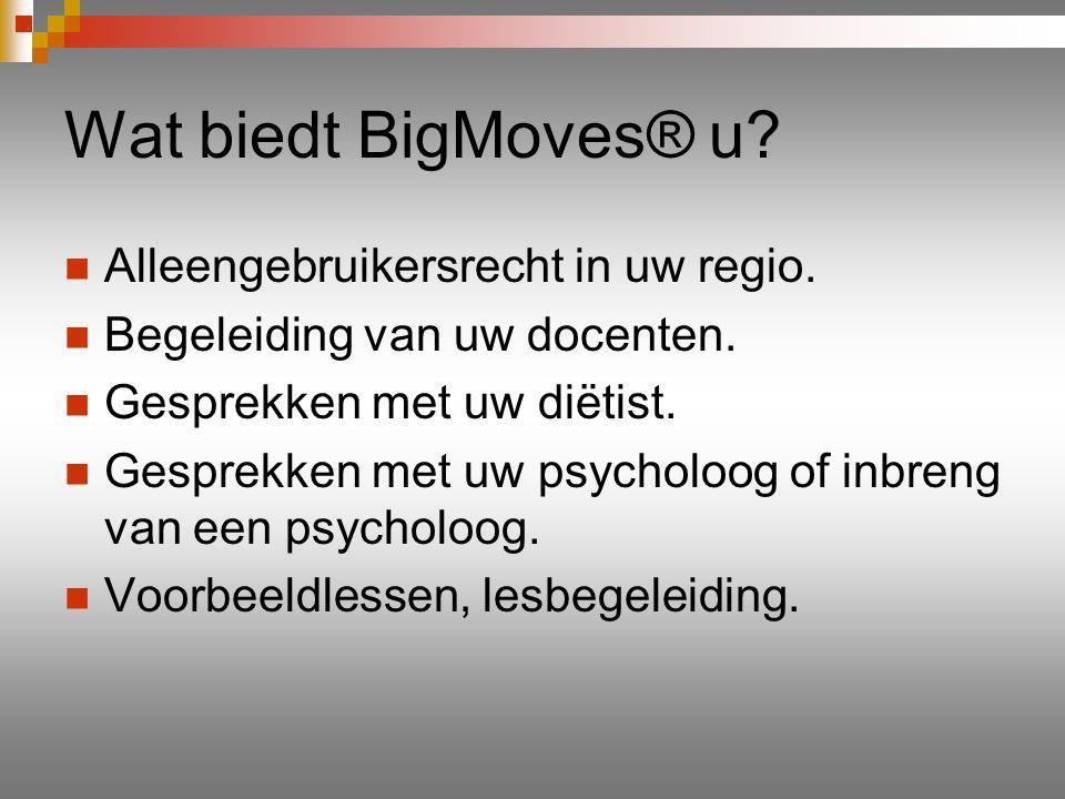 Wat biedt BigMoves® u. Alleengebruikersrecht in uw regio.