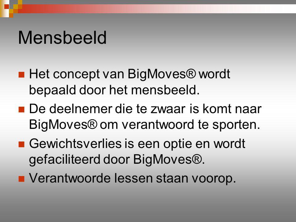 Wat biedt BigMoves® u.Alleengebruikersrecht in uw regio.