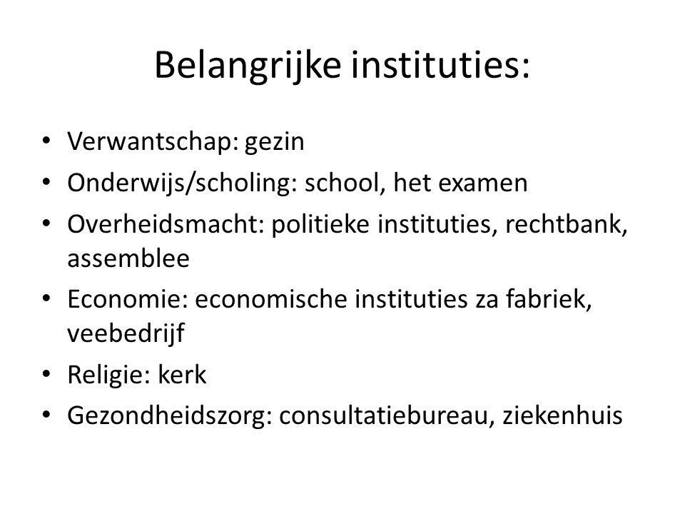 Belangrijke instituties: Verwantschap: gezin Onderwijs/scholing: school, het examen Overheidsmacht: politieke instituties, rechtbank, assemblee Econom
