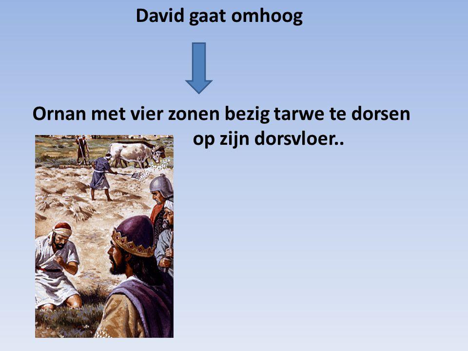 David gaat omhoog Ornan met vier zonen bezig tarwe te dorsen op zijn dorsvloer..