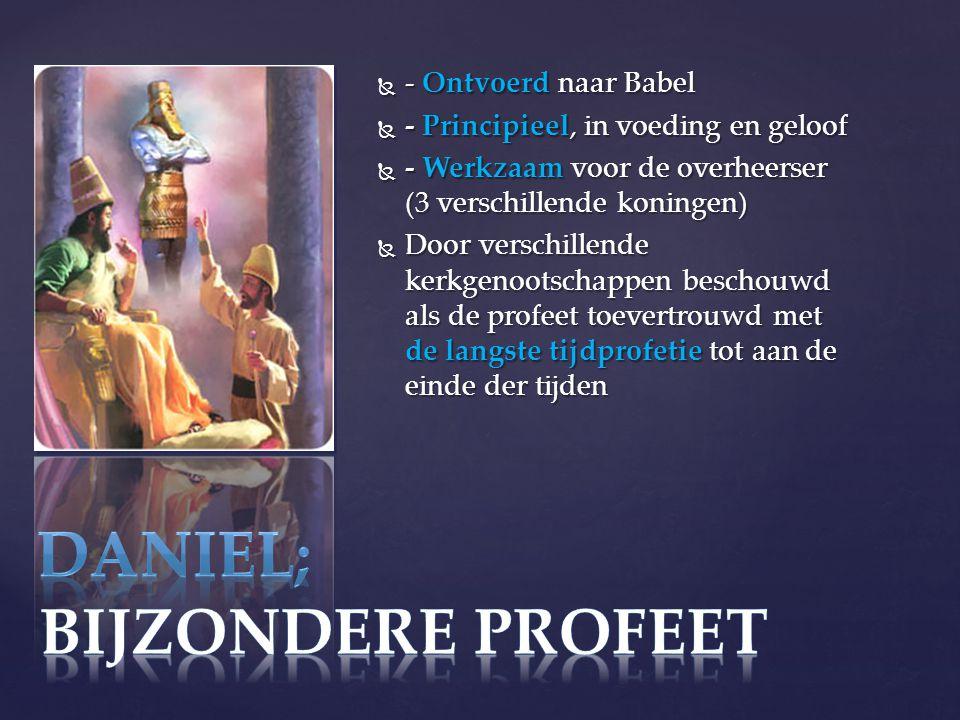  - Ontvoerd naar Babel  - Principieel, in voeding en geloof  - Werkzaam voor de overheerser (3 verschillende koningen)  Door verschillende kerkgenootschappen beschouwd als de profeet toevertrouwd met de langste tijdprofetie tot aan de einde der tijden
