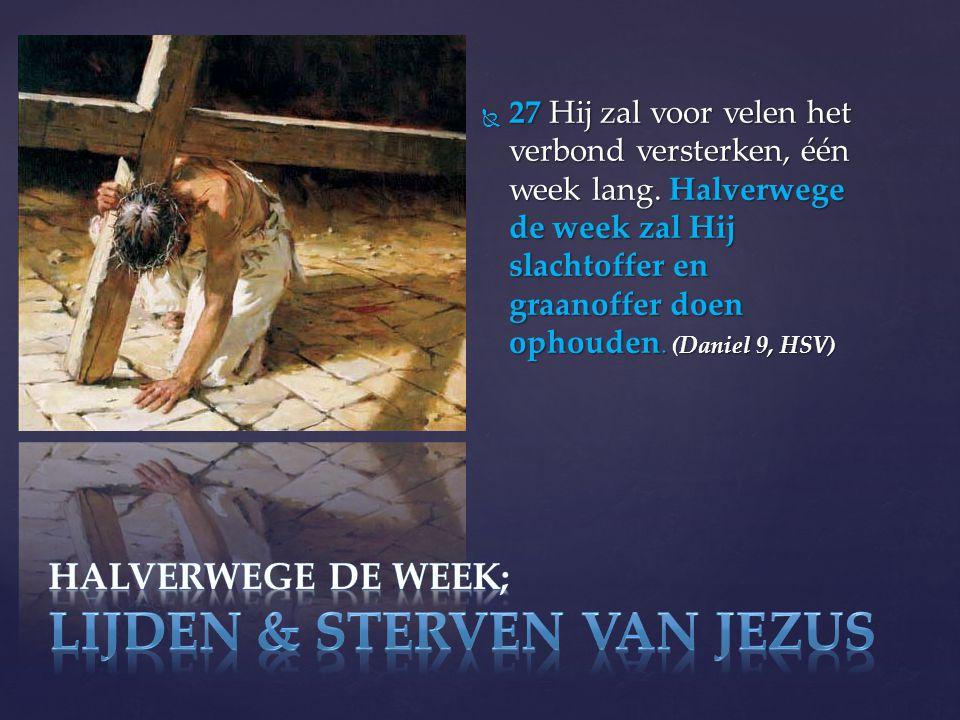  27 Hij zal voor velen het verbond versterken, één week lang.