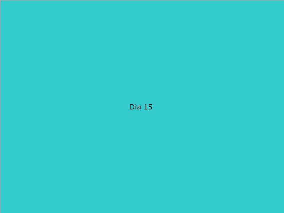 Wat hebben we gezien in Les 16  Woorden schat  We bekijken de 3 woordenlijsten ook eens terug. Dia 15