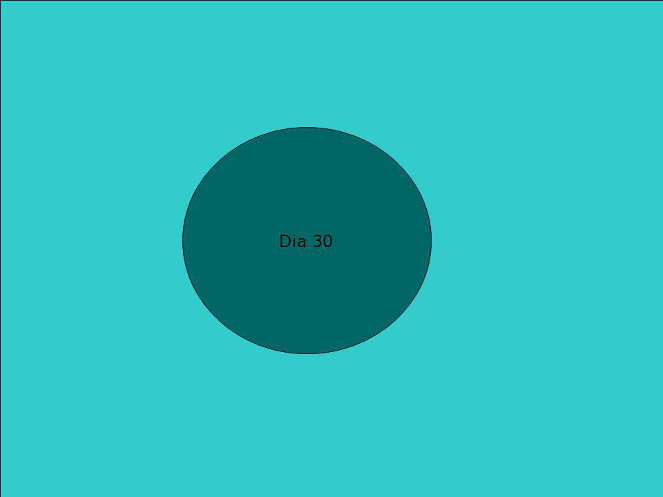 Les 21 : Zinnen  Deze ppt is gemaakt met verschillende leerkrachten Dia 30