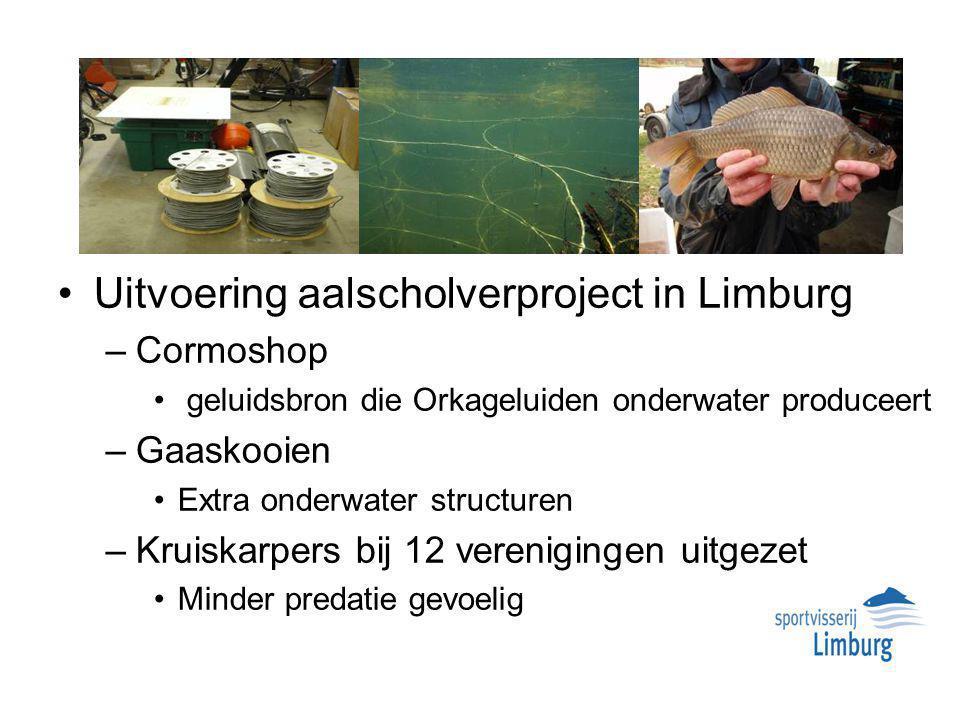 Uitvoering aalscholverproject in Limburg –Cormoshop geluidsbron die Orkageluiden onderwater produceert –Gaaskooien Extra onderwater structuren –Kruiskarpers bij 12 verenigingen uitgezet Minder predatie gevoelig