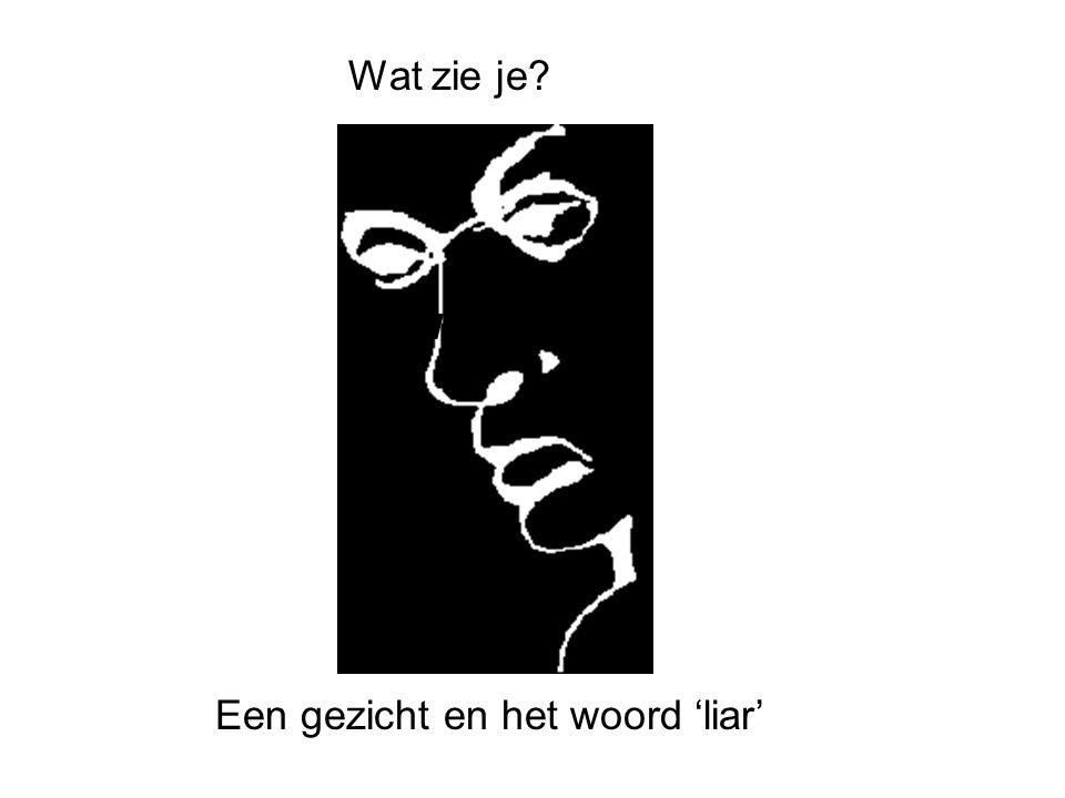 Een gezicht en het woord 'liar' What do Wat zie je?