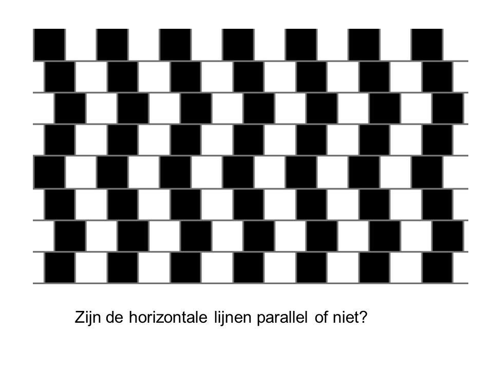 Zijn de horizontale lijnen parallel of niet?