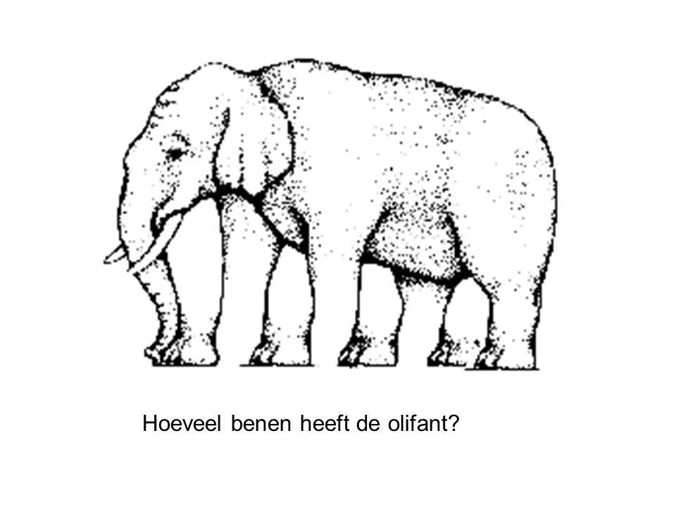 Hoeveel benen heeft de olifant?