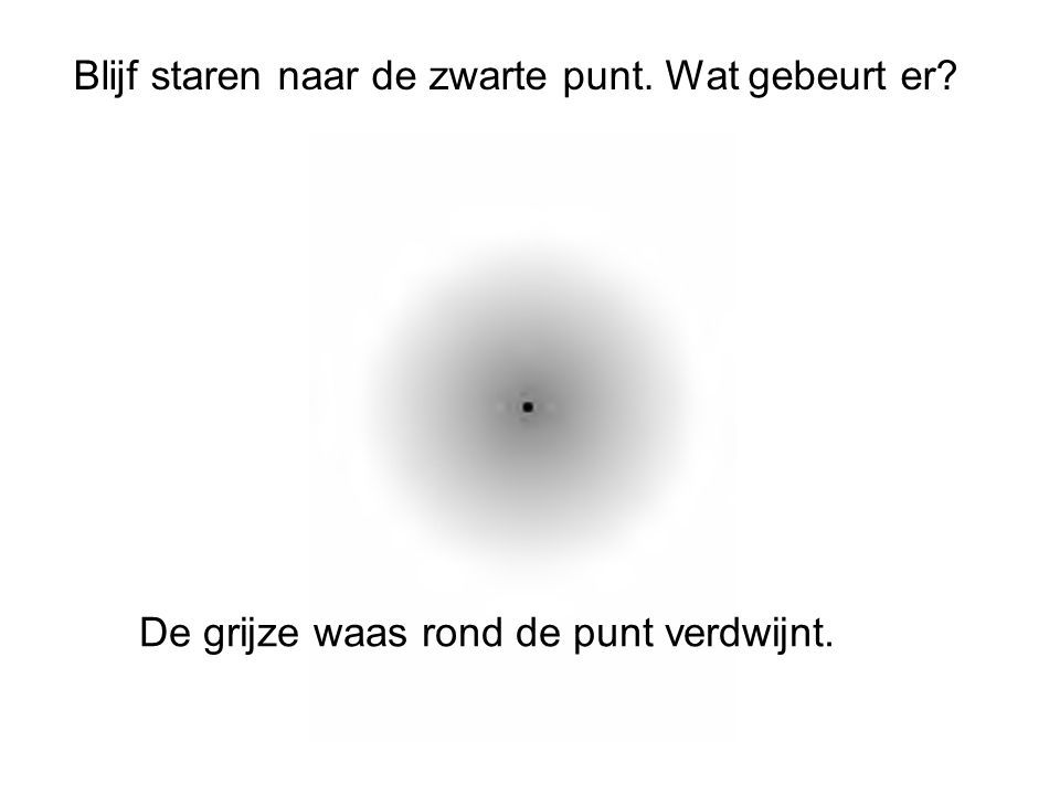 Blijf staren naar de zwarte punt. Wat gebeurt er? De grijze waas rond de punt verdwijnt.