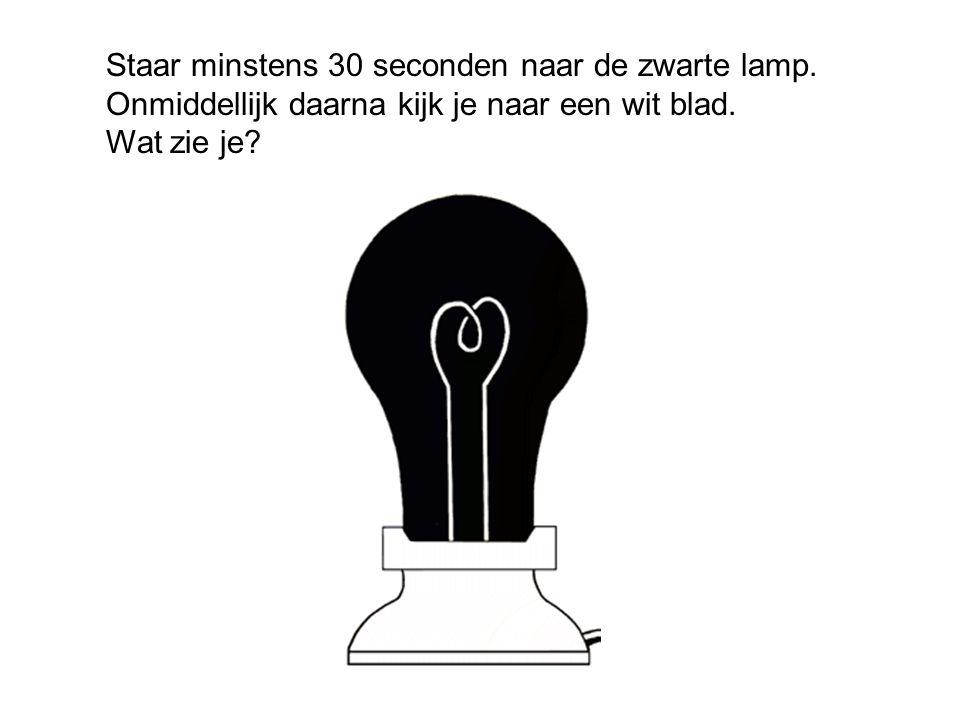 Staar minstens 30 seconden naar de zwarte lamp. Onmiddellijk daarna kijk je naar een wit blad. Wat zie je?